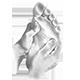 Le pied dans la main